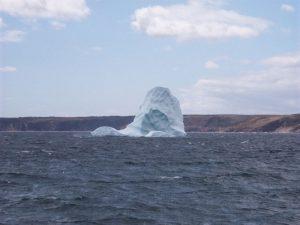 Icebergs & Whales | Bay de Verde