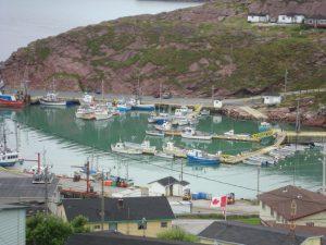Local Scenery - Bay de Verde